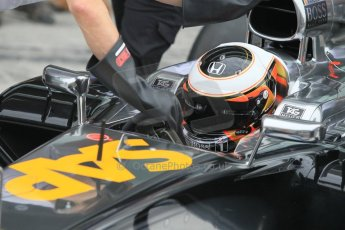 World © Octane Photographic Ltd. Tuesday 25th November 2014. Abu Dhabi Testing - Yas Marina Circuit. McLaren Honda MP4-29H/1X1 - Stoffel Vandoorne. Digital Ref: 1174CB1D8603