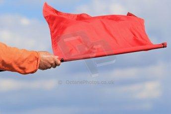 World © Octane Photographic Ltd. FIA Formula E testing – Donington Park 19th August 2014. Spark-Renault SRT_01E. Red Flag. Digital Ref : 1077LB1D5966