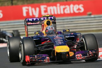 World © Octane Photographic Ltd. 2014 Friday 25th July 2014. Hungarian GP, Hungaroring - Budapest. Practice 2. Infiniti Red Bull Racing RB10 – Daniel Ricciardo. Digital Ref: 1057LB1D0530