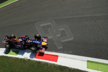 World © Octane Photographic Ltd. Saturday 6th September 2014, Italian GP, Monza - Italy. - Formula 1 Practice 3. Infiniti Red Bull Racing RB10 – Daniel Ricciardo. Digital Ref: 1100LB1D5388