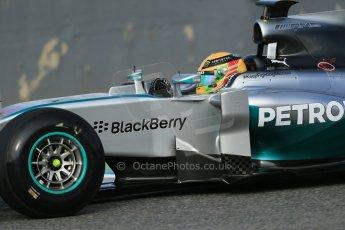 World © Octane Photographic Ltd. 2014 Formula 1 Winter Testing, Circuito de Velocidad, Jerez. Tuesday 28th January 2014. Day 1. Mercedes AMG Petronas F1 W05 – Lewis Hamilton. Digital Ref: 0882lb1d0134