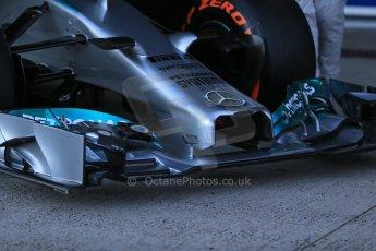 World © Octane Photographic Ltd. 2014 Formula 1 Winter Testing, Circuito de Velocidad, Jerez. Tuesday 27th January 2014. Mercedes AMG Petronas F1 W05 launch. Digital Ref: 0884lb1d9646