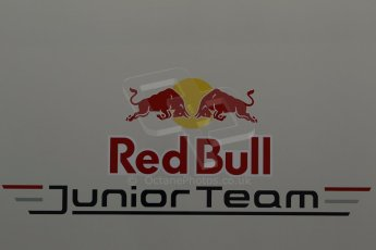 World © Octane Photographic Ltd. World Series by Renault collective test, Jerez de la Frontera, March 24th 2014. Red Bull Junior Team logo. Digital Ref : 0897cb1d4461