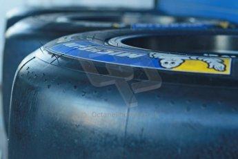 World © Octane Photographic Ltd. World Series by Renault collective test, Jerez de la Frontera, March 24th 2014. World Series by Renault, Renault 3.5 Michelin tyres. Digital Ref : 0897cb1d4472