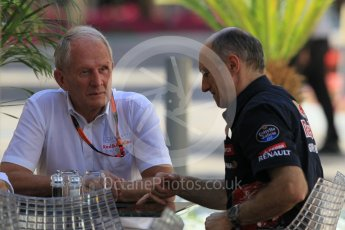 World © Octane Photographic Ltd. Scuderia Toro Rosso - Franz Tost and Red Bull Racing - Helmut Marko. Friday 27th November 2015, F1 Abu Dhabi Grand Prix, Practice 1, Yas Marina. Digital Ref: 1477CB1L4976