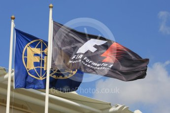 World © Octane Photographic Ltd. Formula 1 flags. Friday 27th November 2015, F1 Abu Dhabi Grand Prix, Practice 1, Yas Marina. Digital Ref: 1477LB5D3979