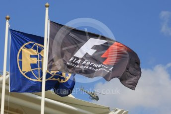 World © Octane Photographic Ltd. Formula 1 flags. Friday 27th November 2015, F1 Abu Dhabi Grand Prix, Practice 1, Yas Marina. Digital Ref: 1477LB5D3980