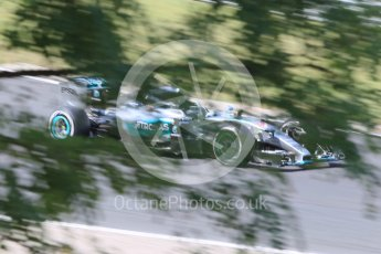 World © Octane Photographic Ltd. Mercedes AMG Petronas F1 W06 Hybrid – Lewis Hamilton. Friday 24th July 2015, F1 Hungarian GP Practice 2, Hungaroring, Hungary. Digital Ref: 1348CB1L5461