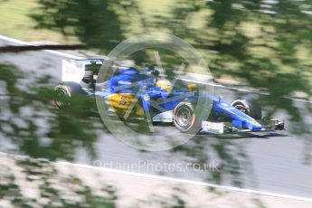 World © Octane Photographic Ltd. Sauber F1 Team C34-Ferrari – Marcus Ericsson. Friday 24th July 2015, F1 Hungarian GP Practice 2, Hungaroring, Hungary. Digital Ref: 1348CB1L5463