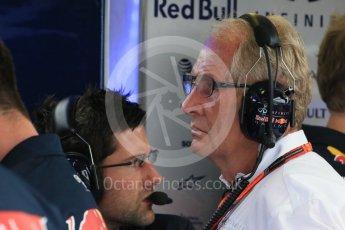 World © Octane Photographic Ltd. Infiniti Red Bull Racing – Dr.Helmut Marko. Saturday 25th July 2015, F1 Hungarian GP Practice 3, Hungaroring, Hungary. Digital Ref: 1352LB1D0026