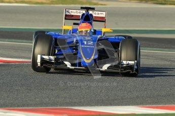 World © Octane Photographic Ltd. Sauber F1 Team C34-Ferrari – Felipe Nasr. Sunday 22nd February 2015, F1 Winter testing, Circuit de Barcelona Catalunya, Spain, Day 4. Digital Ref : 1191CB1L8798