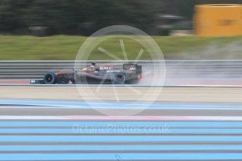 World © Octane Photographic Ltd. Pirelli wet tyre test, Paul Ricard, France. Monday 25th January 2016. McLaren Honda MP4/30 – Stoffel Vandoorne. Digital Ref: 1498CB1D8619