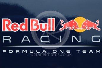 orld © Octane Photographic Ltd. Pirelli wet tyre test, Paul Ricard, France. Monday 25th January 2016. Red Bull Racing logo. Digital Ref: 1498CB7D5088