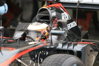 World © Octane Photographic Ltd. Pirelli wet tyre test, Paul Ricard, France. Monday 25th January 2016. McLaren Honda MP4/30 – Stoffel Vandoorne. Digital Ref: 1498CB7D5520