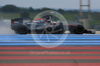 World © Octane Photographic Ltd. Pirelli wet tyre test, Paul Ricard, France. Monday 25th January 2016. McLaren Honda MP4/30 – Stoffel Vandoorne. Digital Ref: 1498LB5D5293