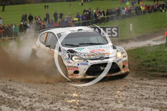 © North One Sport Limited 2010/ Octane Photographic Ltd. 2010 WRC Great Britain, Sunday 14th November 2010. Digital ref : 0120cb1d0539