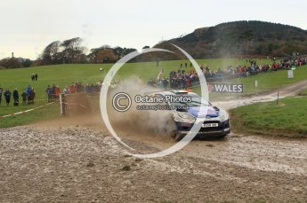 © North One Sport Limited 2010/ Octane Photographic Ltd. 2010 WRC Great Britain, Sunday 14th November 2010. Digital ref : 0120lw1d0227