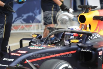 World © Octane Photographic Ltd. Red Bull Racing RB12 with halo cockpit protection device – Pierre Gasly. Tuesday 12th July 2016, F1 In-season testing, Silverstone UK. Digital Ref :1618LB1D7351