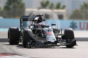 World © Octane Photographic Ltd. McLaren Honda MP4-31 – Fernando Alonso. Friday 25th November 2016, F1 Abu Dhabi GP - Practice 1, Yas Marina circuit, Abu Dhabi. Digital Ref : 1756LB1D8303