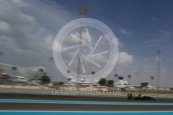 World © Octane Photographic Ltd. McLaren Honda MP4-31 – Fernando Alonso. Friday 25th November 2016, F1 Abu Dhabi GP - Practice 1, Yas Marina circuit, Abu Dhabi. Digital Ref : 1756LB2D7273