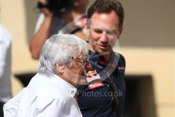 World © Octane Photographic Ltd. Bernie Ecclestone and Christian Horner - Red Bull Racing. Saturday 26th November 2016, F1 Abu Dhabi GP - Paddock, Yas Marina circuit, Abu Dhabi. Digital Ref : 1764LB1D9581