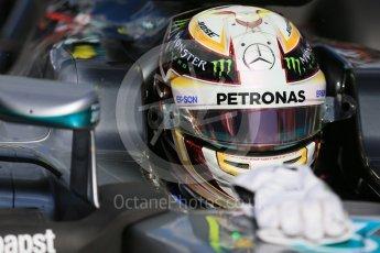 World © Octane Photographic Ltd. Mercedes AMG Petronas – Lewis Hamilton. Sunday 20th March 2016, F1 Australian GP - Grid, Melbourne, Albert Park, Australia. Digital Ref : 1523LB1D6730