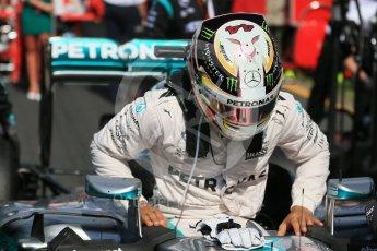 World © Octane Photographic Ltd. Mercedes AMG Petronas – Lewis Hamilton. Sunday 20th March 2016, F1 Australian GP - Grid, Melbourne, Albert Park, Australia. Digital Ref : 1523LB1D6762