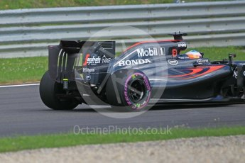 World © Octane Photographic Ltd. McLaren Honda MP4-31 (with new rear wing) – Fernando Alonso. Friday 1st July 2016, F1 Austrian GP Practice 1, Red Bull Ring, Spielberg, Austria. Digital Ref : 1598CB1D1987