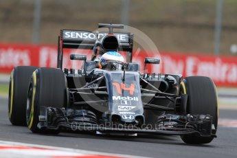 World © Octane Photographic Ltd. McLaren Honda MP4-31 – Fernando Alonso. Friday 22nd July 2016, F1 Hungarian GP Practice 1, Hungaroring, Hungary. Digital Ref :