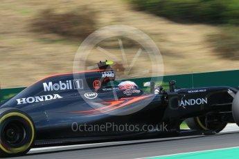 World © Octane Photographic Ltd. McLaren Honda MP4-31 – Jenson Button. Friday 22nd July 2016, F1 Hungarian GP Practice 2, Hungaroring, Hungary. Digital Ref : 1641CB1D6875