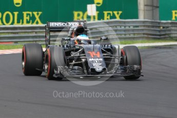 World © Octane Photographic Ltd. McLaren Honda MP4-31 – Fernando Alonso. Saturday 23rd July 2016, F1 Hungarian GP Practice 3, Hungaroring, Hungary. Digital Ref :1647CB1D7706