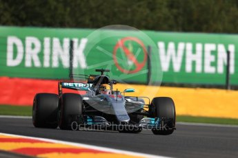 World © Octane Photographic Ltd. Formula 1 - Belgian Grand Prix - Friday - Practice 1. Lewis Hamilton - Mercedes AMG Petronas F1 W08 EQ Energy+. Circuit de Spa Francorchamps, Belgium. Friday 25th August 2017. Digital Ref:1922LB1D5217