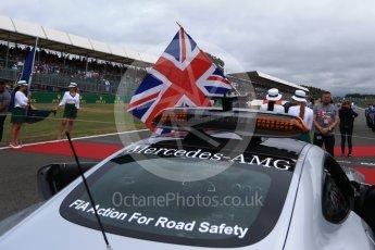World © Octane Photographic Ltd. Formula 1 - British Grand Prix - Sunday - Grid. Silverstone, UK. Sunday 16th July 2017. Digital Ref: 1891LB2D9820