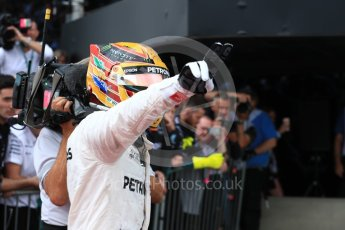 World © Octane Photographic Ltd. Formula 1 - British Grand Prix - Sunday - Race Podium. Lewis Hamilton - Mercedes AMG Petronas F1 W08 EQ Energy+. Silverstone, UK. Sunday 16th July 2017. Digital Ref: 1893LB1D4468