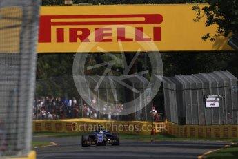 World © Octane Photographic Ltd. Formula 1 - Australian Grand Prix - Practice 1. Pascal Wehrlein – Sauber F1 Team C36. Albert Park Circuit. Friday 24th March 2017. Digital Ref: 1793LB1D1703