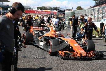 World © Octane Photographic Ltd. Formula 1 - Japanese Grand Prix - Sunday - Grid. Stoffel Vandoorne - McLaren Honda MCL32. Suzuka Circuit, Suzuka, Japan. Sunday 8th October 2017. Digital Ref:1979LB1D0240