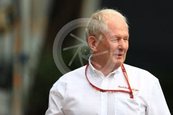 World © Octane Photographic Ltd. Formula 1 - Singapore Grand Prix - Paddock. Helmut Marko - advisor to the Red Bull GmbH Formula One Teams and head of Red Bull's driver development program. Marina Bay Street Circuit, Singapore. Saturday 16th September 2017. Digital Ref:1961LB1D0980