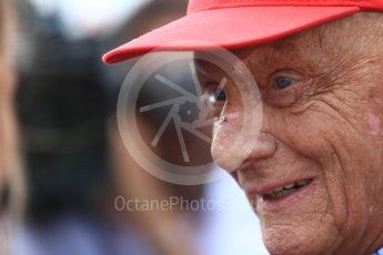 World © Octane Photographic Ltd. Formula 1 - French GP - Grid. Niki Lauda - Non-Executive Chairman of Mercedes-Benz Motorsport. Circuit Paul Ricard, Le Castellet, France. Sunday 24th June 2018.