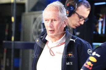 World © Octane Photographic Ltd. Formula 1 – German GP - Practice 3. Helmut Marko - advisor to the Red Bull GmbH Formula One Teams and head of Red Bull's driver development program. Hockenheimring, Baden-Wurttemberg, Germany. Saturday 21st July 2018.