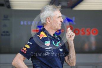 World © Octane Photographic Ltd. Formula 1 – Hungarian GP - Morning setup. Aston Martin Red Bull Racing – Charlie. Hungaroring, Budapest, Hungary. Saturday 28th July 2018.