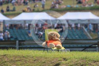 World © Octane Photographic Ltd. Formula 1 – Hungarian GP - Practice 2. Mr Bear. Hungaroring, Budapest, Hungary. Friday 27th July 2018.