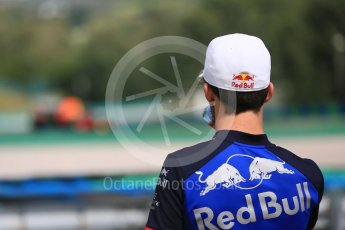 World © Octane Photographic Ltd. Formula 1 – Hungarian Post-Race Test - Day 2. Aston Martin Red Bull Racing TAG Heuer RB14 – Jake Dennis watched by Scuderia Toro Rosso – Pierre Gasly. Hungaroring, Budapest, Hungary. Wednesday 1st August 2018.
