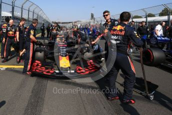 World © Octane Photographic Ltd. Formula 1 – Australian GP Grid. Aston Martin Red Bull Racing RB15 – Max Verstappen. Melbourne, Australia. Sunday 17th March 2019.