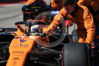 World © Octane Photographic Ltd. Formula 1 – United States GP - Grid. McLaren MCL34 – Lando Norris. Circuit of the Americas (COTA), Austin, Texas, USA. Sunday 3rd November 2019.