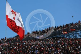 World © Octane Photographic Ltd. Formula 1 - United States GP - Grid. Robert Kubica supporter's flag. Circuit of the Americas (COTA), Austin, Texas, USA. Sunday 3rd November 2019.