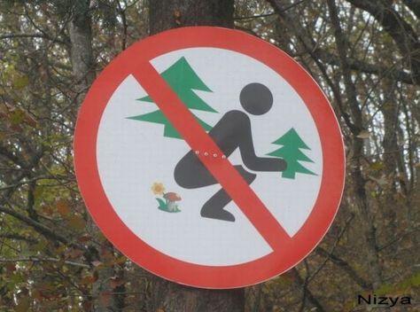 Pokud vlastníte kus lesa přijde vám tato značka možná vhod