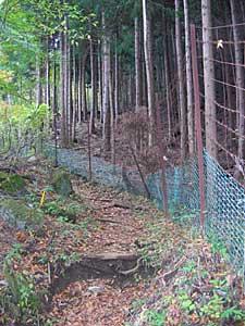 鹿よけの柵