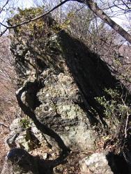 経石の南側