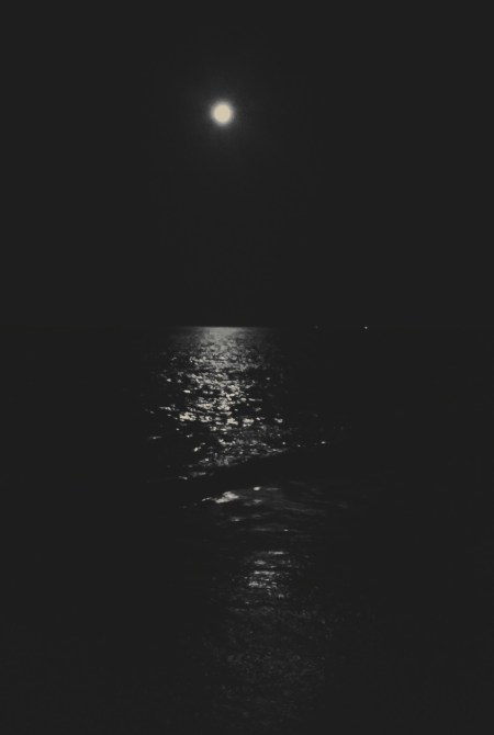 """Plum Island Moon"" © TJ Edson"