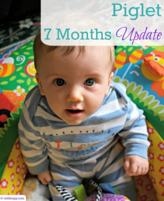 Piglet is 7 months old! What milestones has he hit in the last month, how is his size, feeding and sleep? How does you baby compare? http://oddhogg.com/piglet-7-months-update/